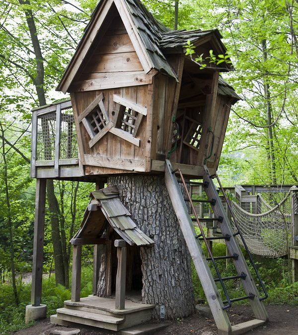 Tripps Travel Network  Offers A Tree House Wilderness Experience