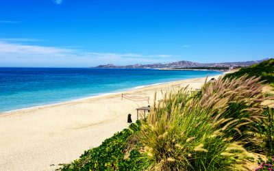Great Beach Activities Recommended by Tripps Travel Network